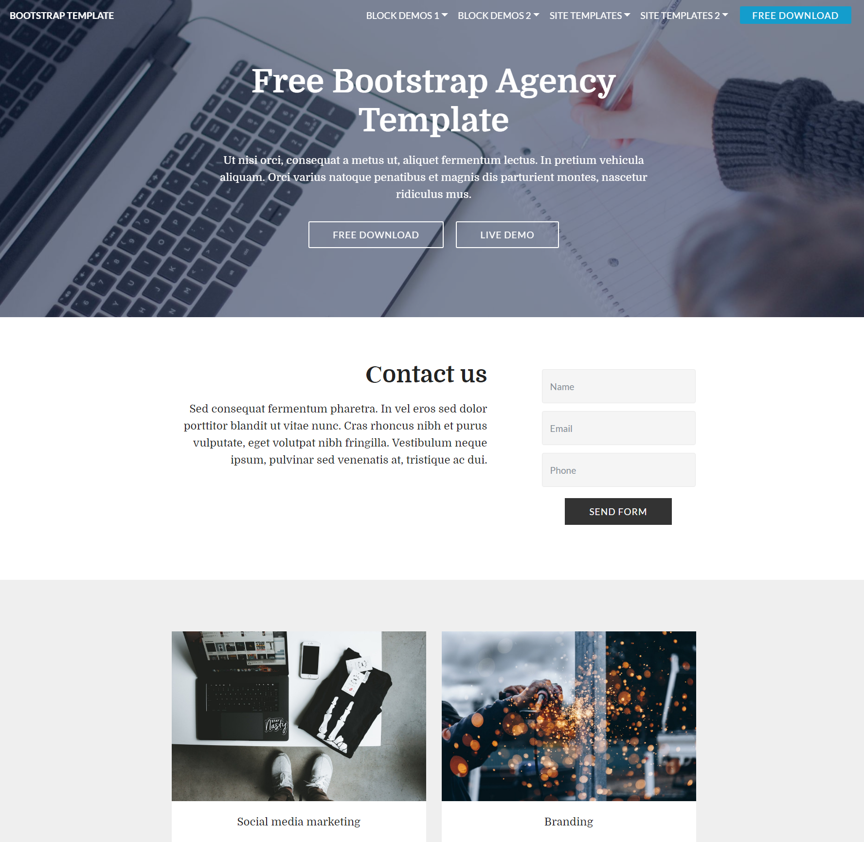 Free Download Bootstrap  Agency Themes