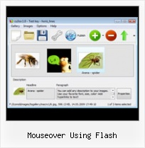 Mouseover Using Flash Flash Animation Gallery Creator Tutorial