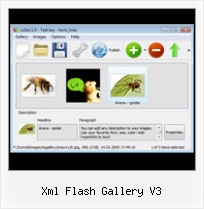 Xml Flash Gallery V3 Auto Scrolling Gallery Flash As3