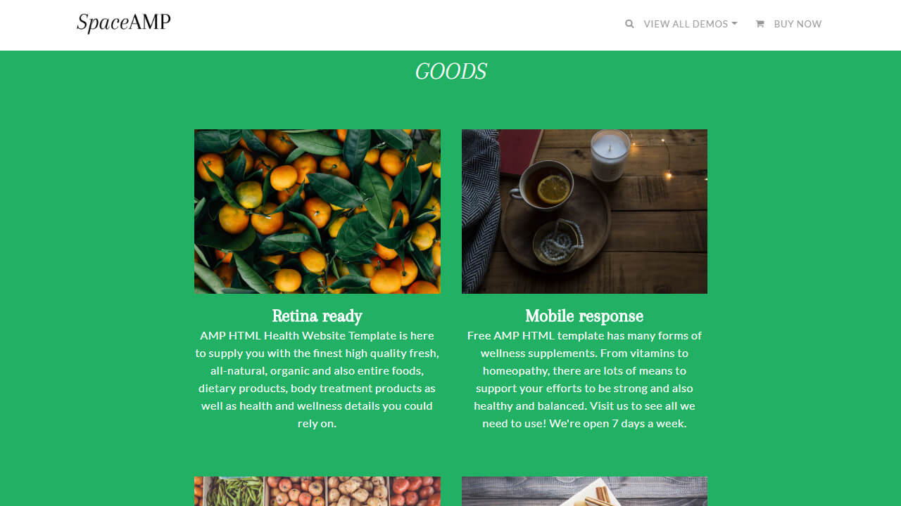 AMP HTML Health Site Template